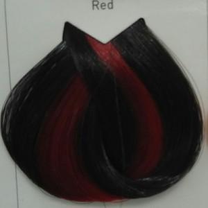 LOREAL לוריאל צבע magent red