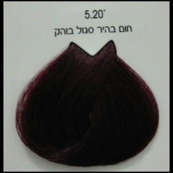 צבע לוריאל 5-20 חום בהיר סגול בוהק