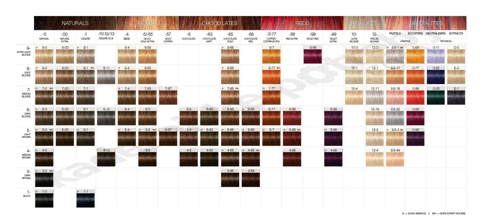 צבעים לשיער איגורה רויאל שוורצקופף